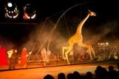 Największy na świecie cyrk marionentek  fot. archiwum Klinika Lalek (6)
