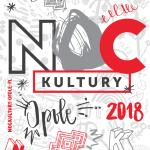 NK grafika 1 (002)